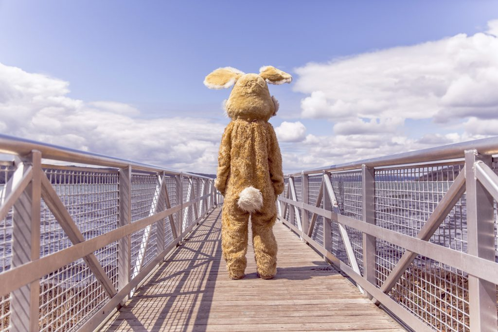 Photograph of person in rabbit costume on bridge